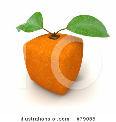 Oranges Clipart #79055 by Frank Boston