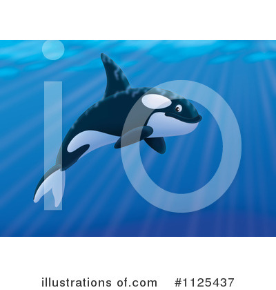 Orca Clipart #1125437 by Alex Bannykh