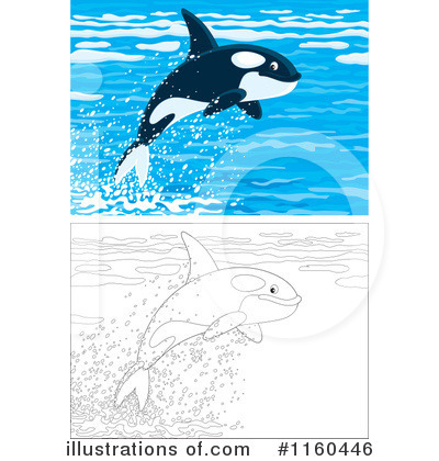 Orca Clipart #1160446 by Alex Bannykh