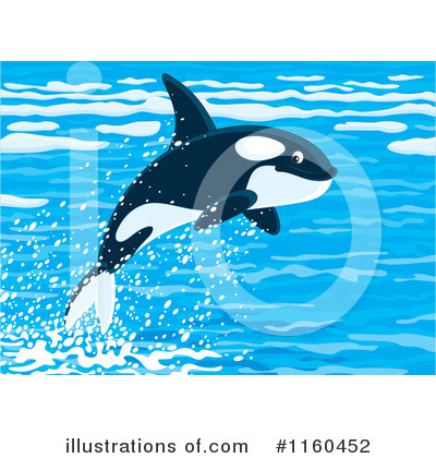 Orca Clipart #1160452 by Alex Bannykh