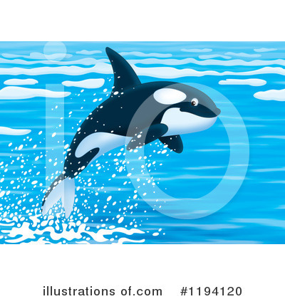 Orca Clipart #1194120 by Alex Bannykh