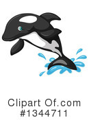 Orca Clipart #1344711 by Graphics RF