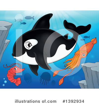 Royalty-Free (RF) Orca Clipart Illustration by visekart - Stock Sample #1392934