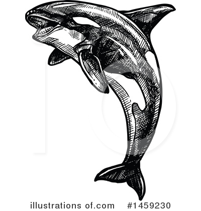 Orca Clipart #1459230 by Vector Tradition SM