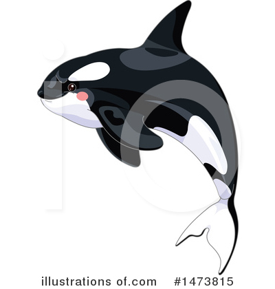 Orca Clipart #1473815 by Pushkin