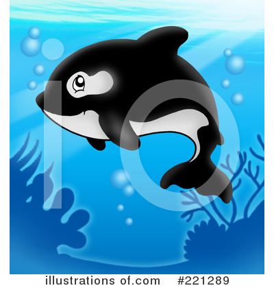 Orca Clipart #221289 by visekart