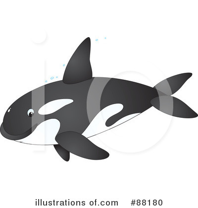 Orca Clipart #88180 by Alex Bannykh