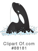 Royalty-Free (RF) orca Clipart Illustration #88181