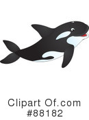Orca Clipart #88182 by Alex Bannykh