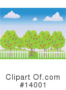 Royalty-Free (RF) orchard Clipart Illustration #14001