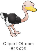 Ostrich Clipart #16256 by AtStockIllustration