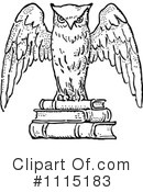Royalty-Free (RF) Owl Clipart Illustration #1115183