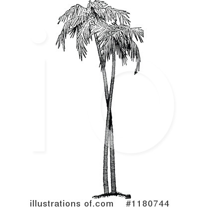 Palm tree clipart 1180744 illustration by prawny vintage royalty free rf palm tree clipart illustration by prawny vintage stock sample altavistaventures Images