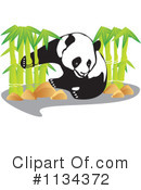 Royalty-Free (RF) Panda Clipart Illustration #1134372