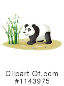 Royalty-Free (RF) Panda Clipart Illustration #1143975