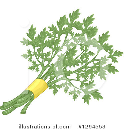 Royalty-Free (RF) Parsley Clipart Illustration by BNP Design Studio - Stock Sample #1294553