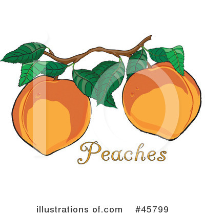 Peach Clipart #45799 by Pams Clipart