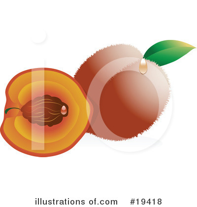 Peach Clipart #19418 by Vitmary Rodriguez