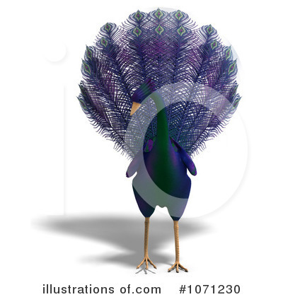 Peacock Clipart #1071230 by Ralf61
