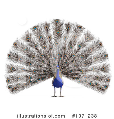 Peacock Clipart #1071238 by Ralf61