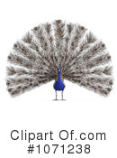 Peacock Clipart #1071238