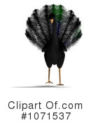Peacock Clipart #1071537