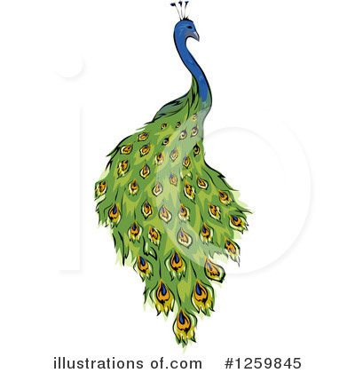 Peacock Clipart #1259845 by BNP Design Studio