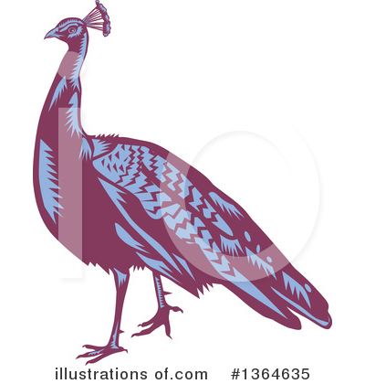 Peacock Clipart #1364635 by patrimonio