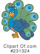 Peacock Clipart #231324