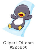 Penguin Clipart #226260 by BNP Design Studio