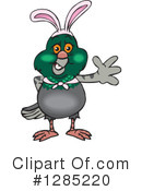 Pigeon Clipart #1285220 by Dennis Holmes Designs