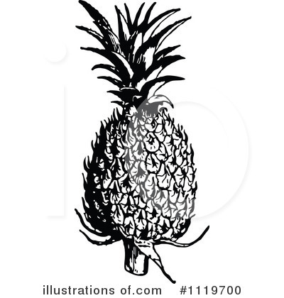 Pineapple Clipart #1119700 by Prawny Vintage