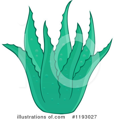 Aloe Clipart #1193027 by visekart