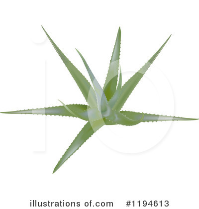 Aloe Clipart #1194613 by dero