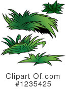 Plant Clipart #1235425 by dero
