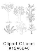 Royalty-Free (RF) Plant Clipart Illustration #1240248
