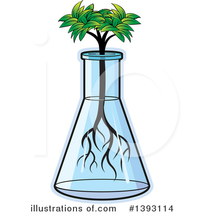 Plant Clipart #1393114 by Lal Perera