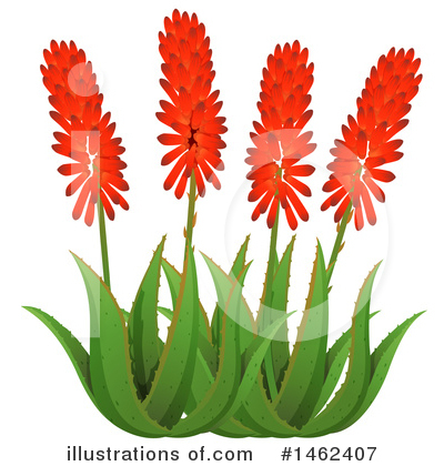 Flower Clipart #1462407 by Graphics RF