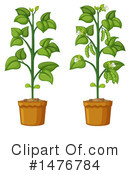Royalty-Free (RF) Plant Clipart Illustration #1476784