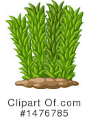 Plant Clipart #1476785 by Graphics RF