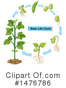Royalty-Free (RF) Plant Clipart Illustration #1476786