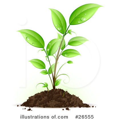 Plants Clipart #26555 by beboy