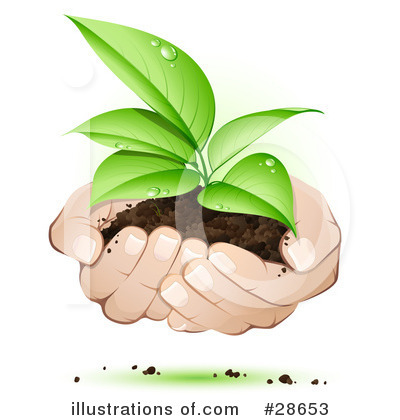 Plants Clipart #28653 by beboy