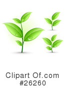 Royalty-Free (RF) Plants Clipart Illustration #26260