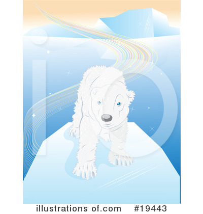 Polar Bear Clipart #19443 by Vitmary Rodriguez