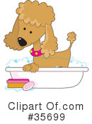 Poodle Clipart #35699 by Maria Bell