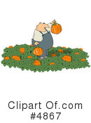 Royalty-Free (RF) Pumpkin Clipart Illustration #4867