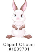 Rabbit Clipart #1239701