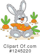 Rabbit Clipart #1245220