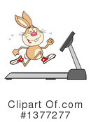Rabbit Clipart #1377277 by Hit Toon